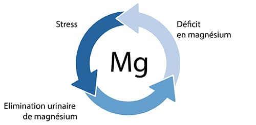 Stress et magnésium nutrixeal-info