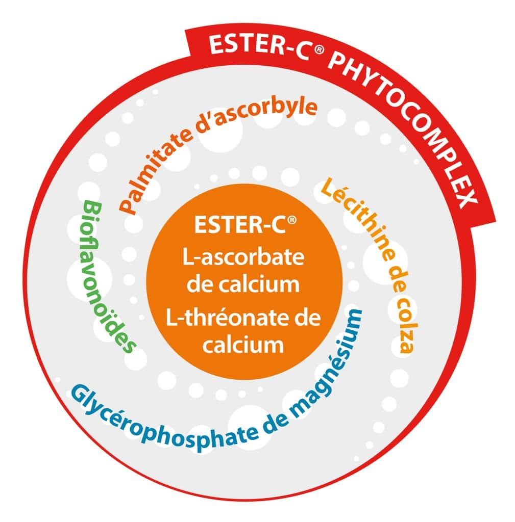 Composition Ester C Phytocomplex Dossier Vitamine C Nutrixeal Info