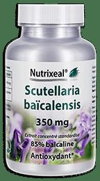 Scutellaria baicalensis Nutrixeal Info