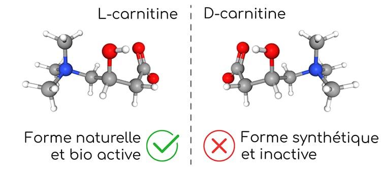 La L-carnitine est la forme naturelle.