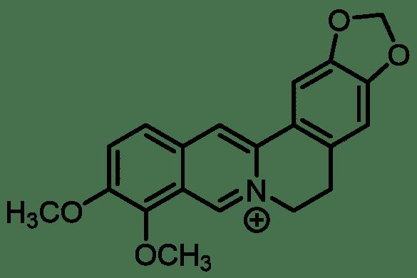 berberine : structure moléculaire.