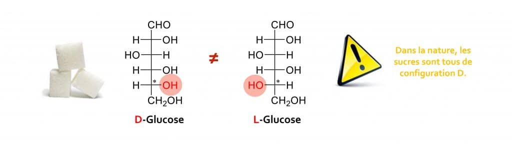 glucose Nutrixeal Info