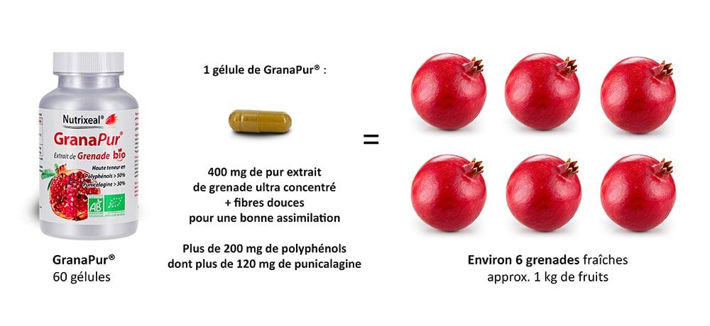 Granapur Nutrixeal apporte autant de polyphénols que 6 grenades fraiches.