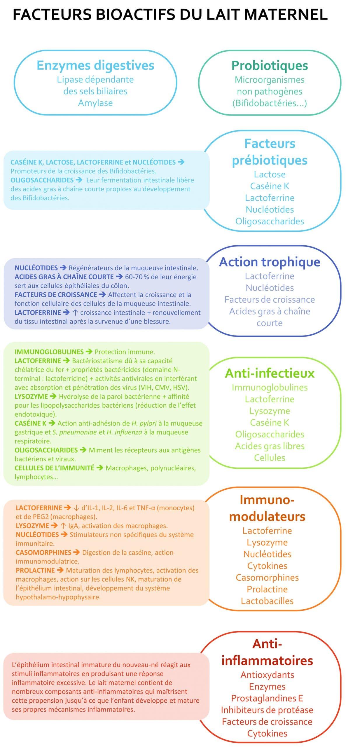 facteurs-bioactifs-du-lait-maternel-Nutrixeal-Info