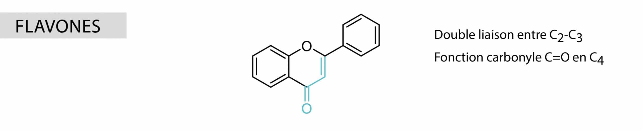 flavones Nutrixeal Info