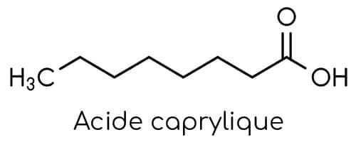 Acide caprylique contenu dans le produit Candidapur NUtrixeal.