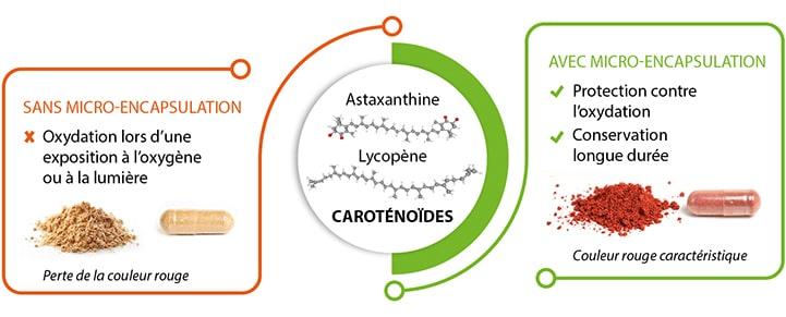 Micro-encapsulation des caroténoïdes Nutrixeal, astaxanthine et lycopène.