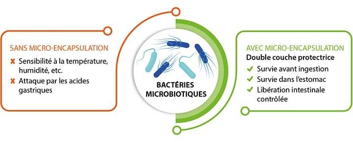 Double micro-encapsulation des microbiotiques Nutrixeal, dans le produit Probiopu.