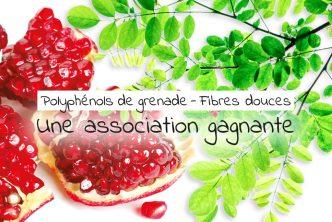 Polyphénols de grenade et fibres douces : une association gagnante.