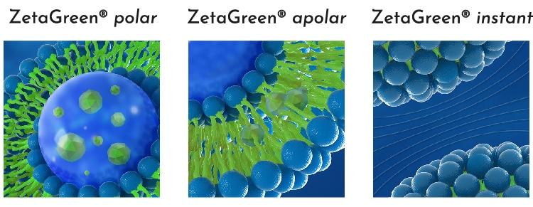 Variantes ZetaGreen liposomes Nutrixeal