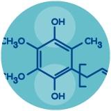 L'ubiquinol est particulièrement plus assimilable que la forme réduite ubiquinone.
