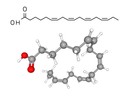 Structure moléculaire du SDA (acide stéaridonique)