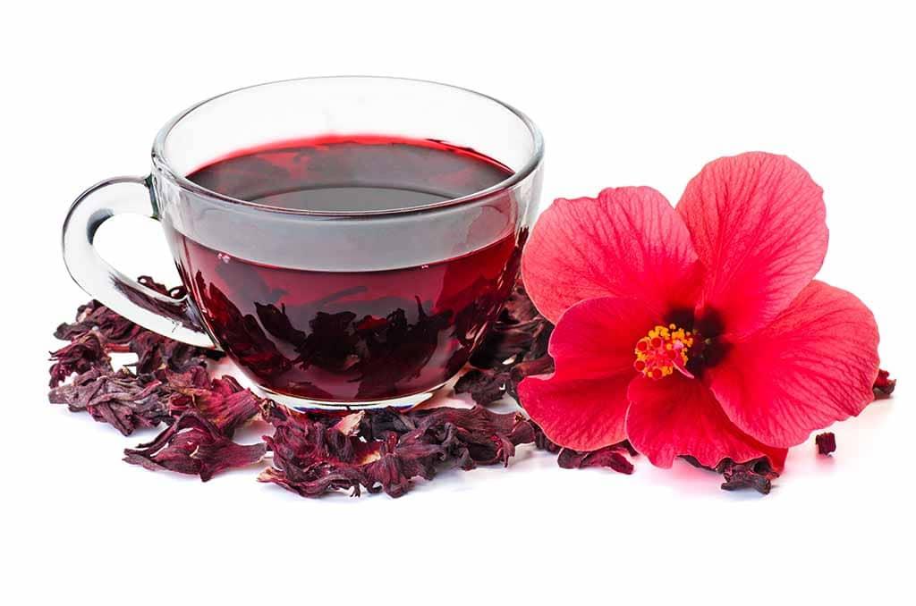Hibiscus, source acide hydroxycitrique