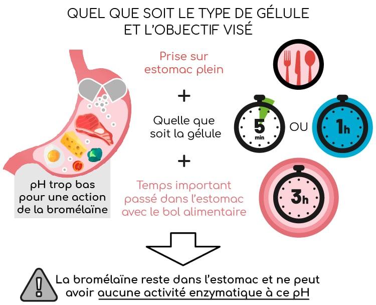 La bromélaïne ne doit jamais être consommée sur estomac plein.