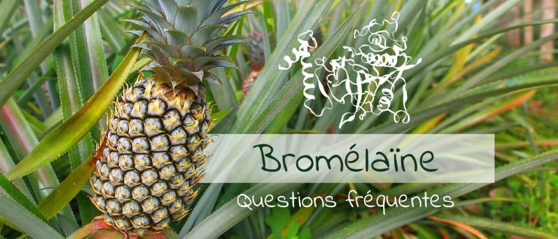 Bromélaïnes : questions fréquentes. Nutrixeal Répond.