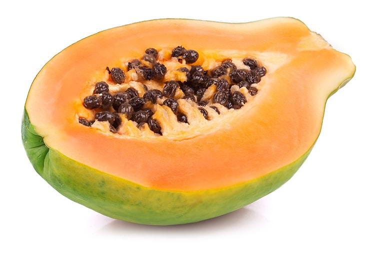 La papaïne extraite de la papaye bénéficie d'un large usage ethnobotanique.