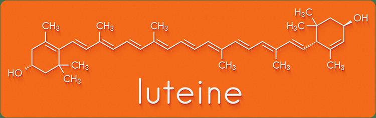Structure chimique 2D de la lutéine