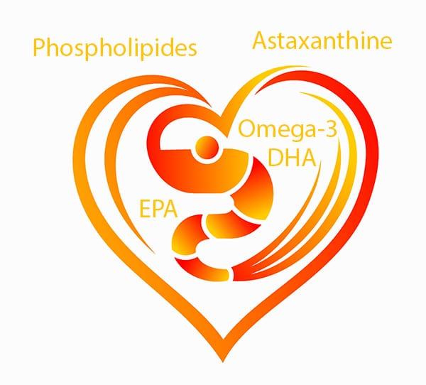 Huile de krill : omega-3, phospholipides, astaxanthine.