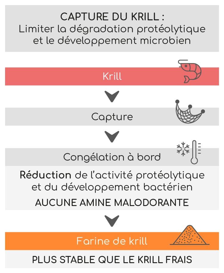 capture krill aker biomarine superba boost nutrixeal 3