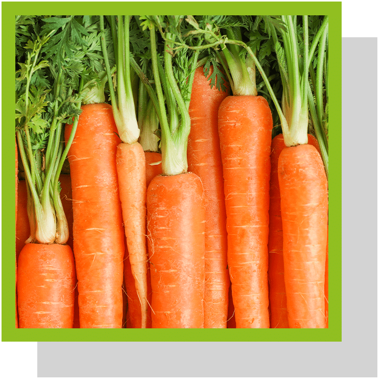 Carotene index nutraceutique