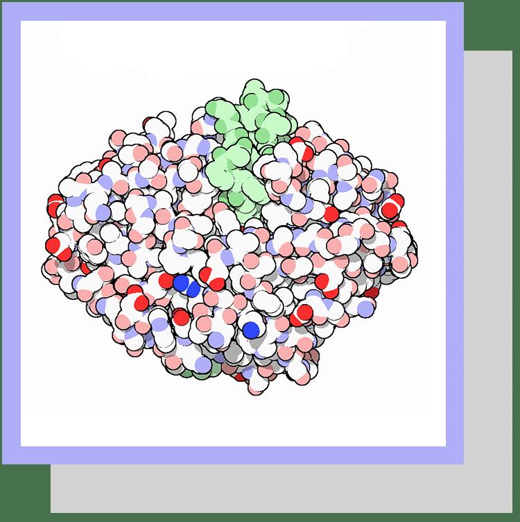 pepsinogene index physiologique nutrixeal info