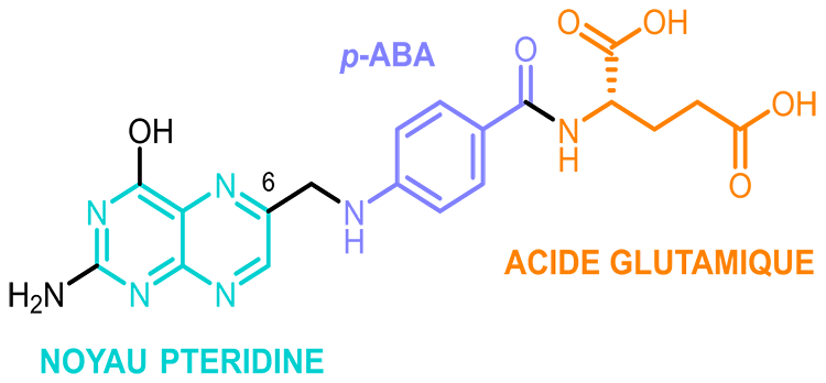 acide folique structure vitamine B9 nutrixeal info