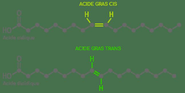 acides gras cis et trans exemple nutrixeal info