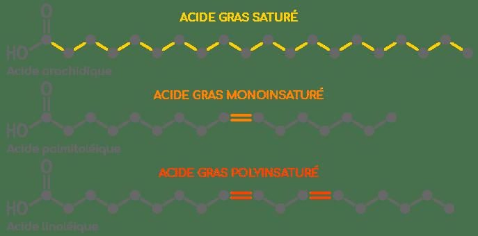 acides gras sature et insature exemples nutrixeal info