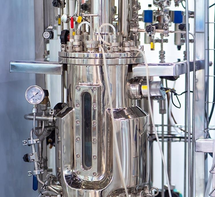Biofermentation culture de microorganismes