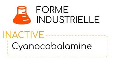 forme industrielle de vitamine B12 nutrixeal info